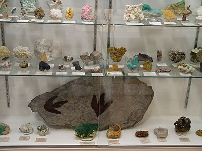 mineral display