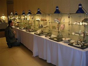 high quality mineral displays